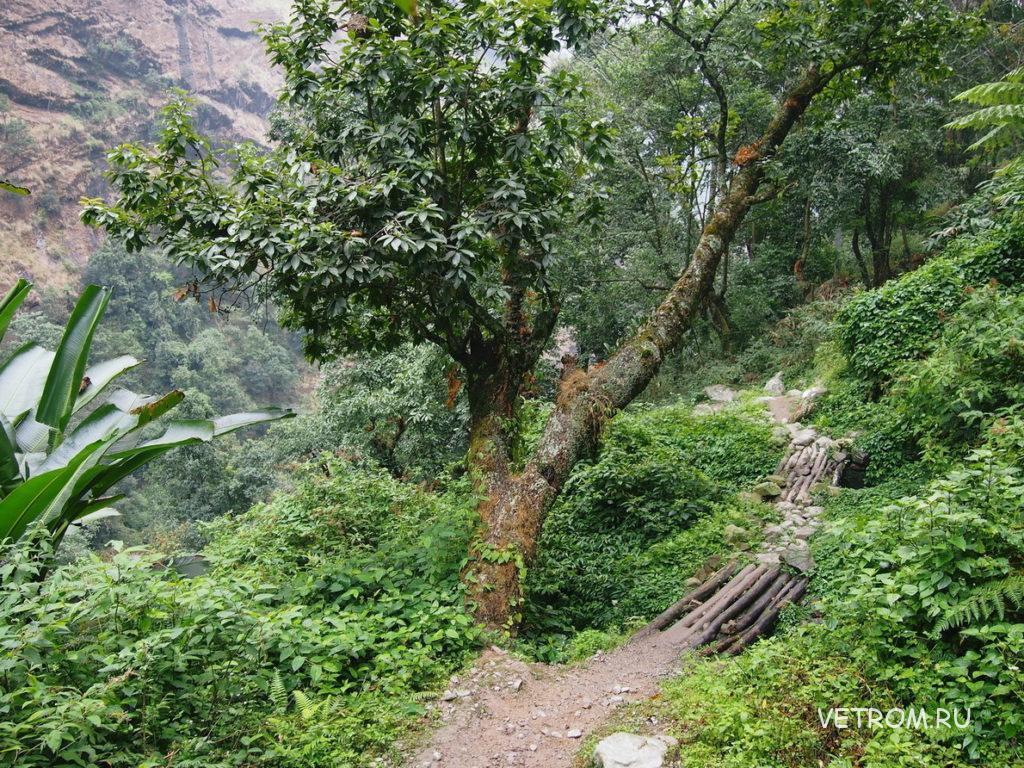 Непальские дорожки и тропинки  вдоль реки Марсьянди
